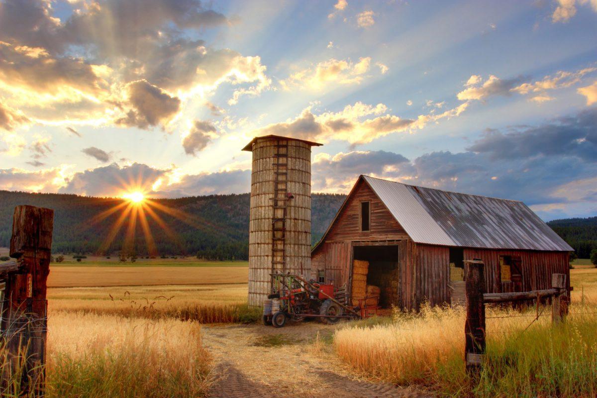 Die Sonne geht auf über einem Silo. Foto: Timothy Eberly / Unsplash