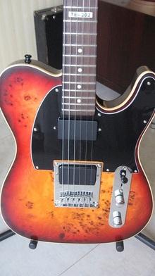 ESP LTD TE-202 Custom