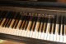 Schroder 22674 1904 черный/лак