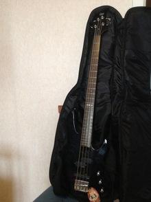ESP LTD B 50 с струнами SIT Strings + комбик + чехол