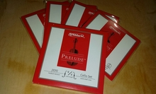 D'addario Prelude J1010 4/4M для виолончели