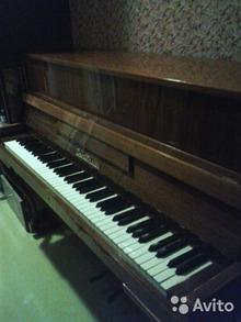 Zimmermann 269521