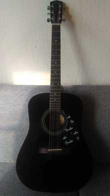 Fender Dg-4 2009 Black