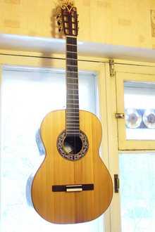 Гитара ручной работы