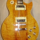 Gibson Gibson Les Paul Standard Slash  gold