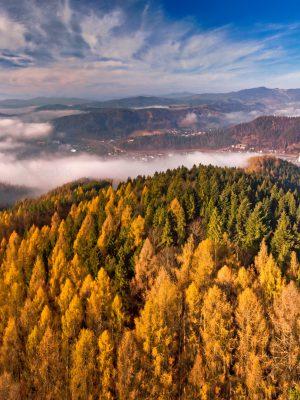 Późno-jesienna Muszyna – panorama 360° z Góry Malnik