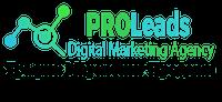 PROLeads Трафик Маркетинг Продажи Logo