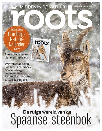 cover-roots-december-2016