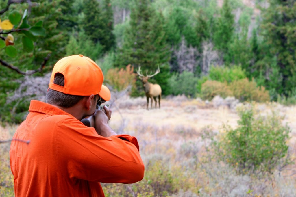 A big game Elk hunter aiming his rifle at a big bull Elk in an open medow. Focus is on the hunter.