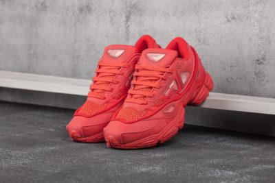 Кроссовки Adidas Ozweego 2 x Raf Simons