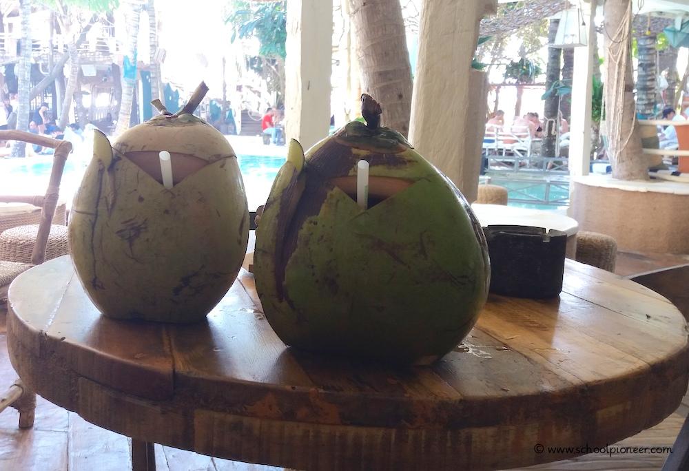 Kokosnüsse-Bali