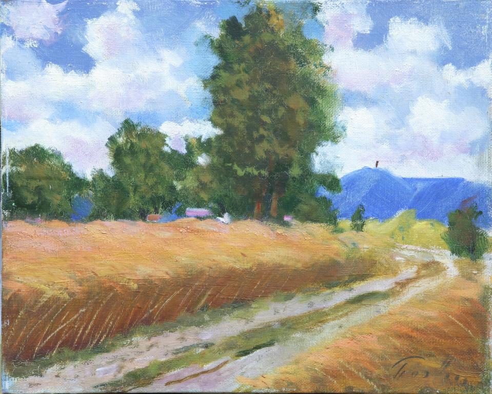 Пшеничне поле 1961