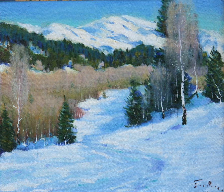 Зима на перевалі 1981