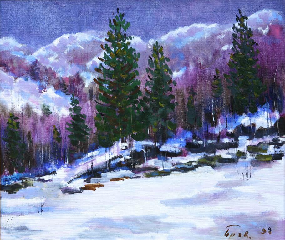 Зимовий пейзаж Березнянщини 1994