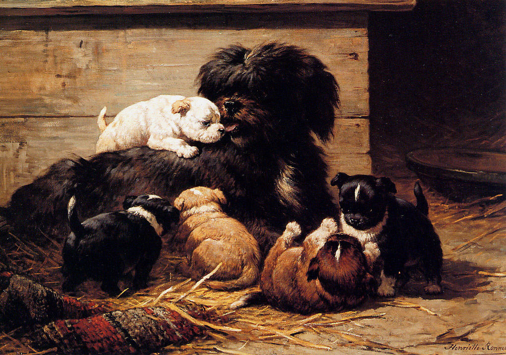 1313674373_dog-with-puppies_www.nevsepic.com.ua