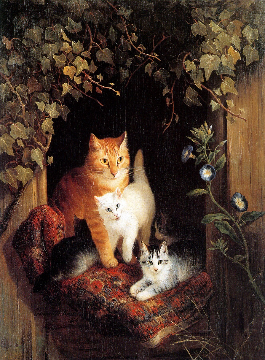 1313674386_nest-with-kittens_www.nevsepic.com.ua