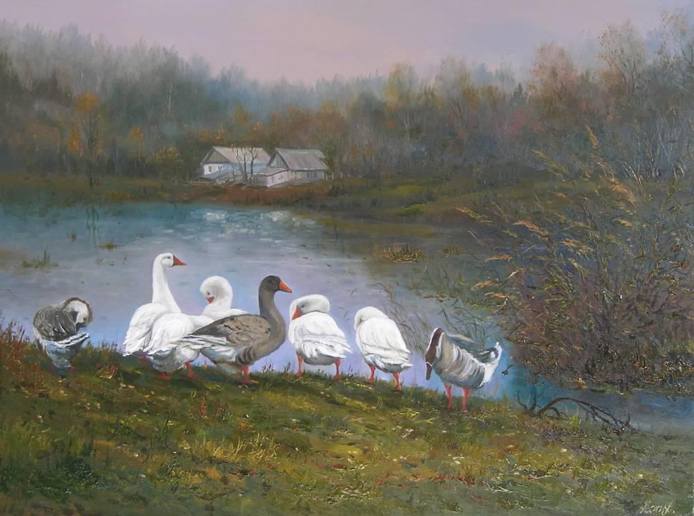 Гуси на пруду в Решуцке.
