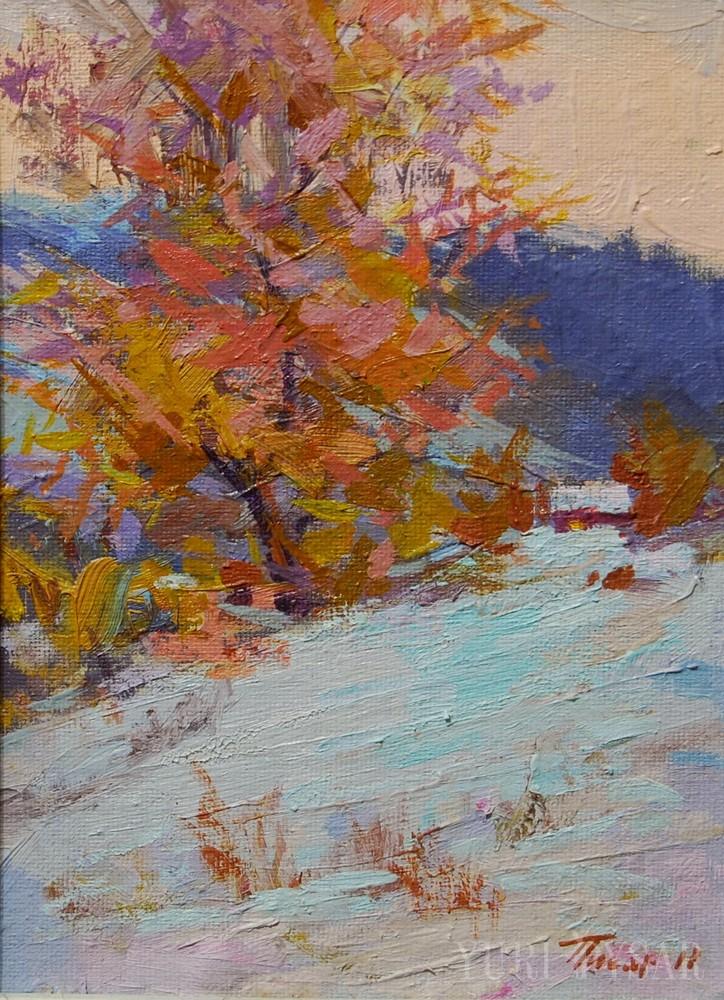 кольорова зима