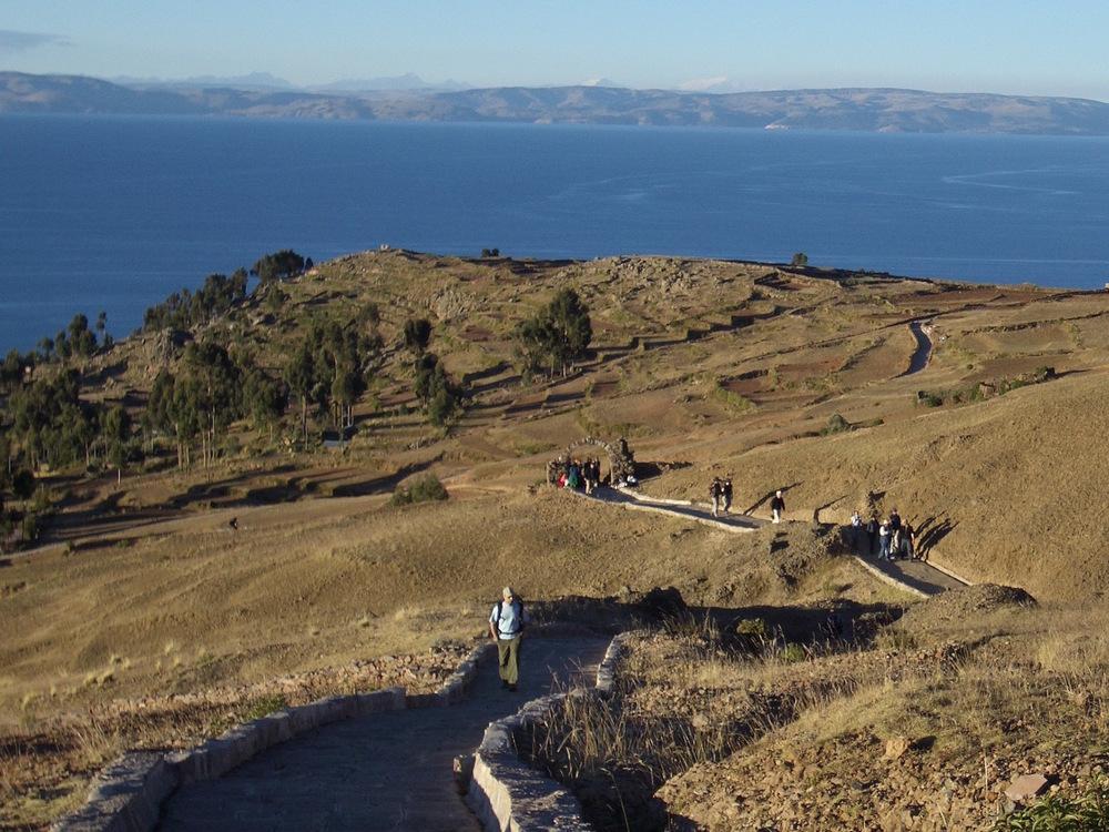 Trisali titicaca