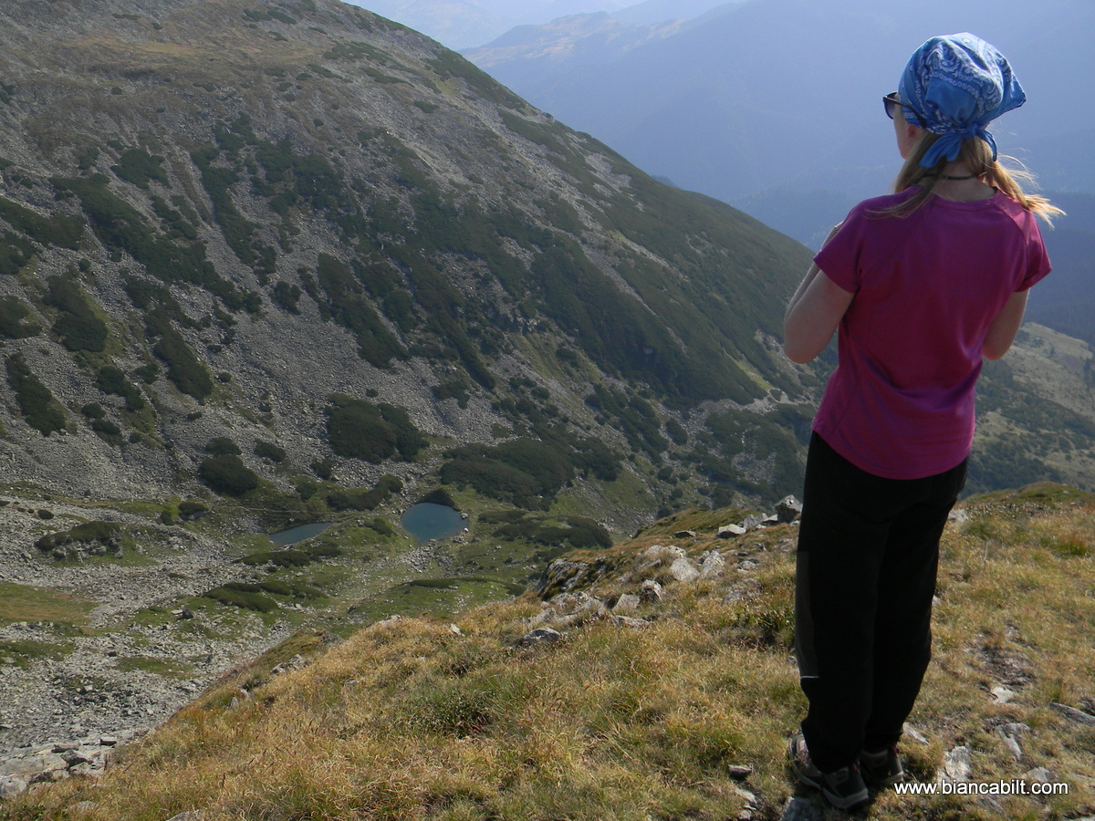 Pe vârful Buhăescu Mare, vedere spre tăurile Buhăescu.