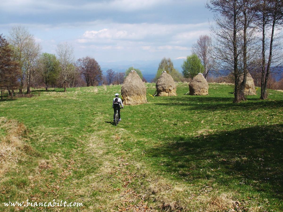 Peisajul rural și verde e absolut încântător!