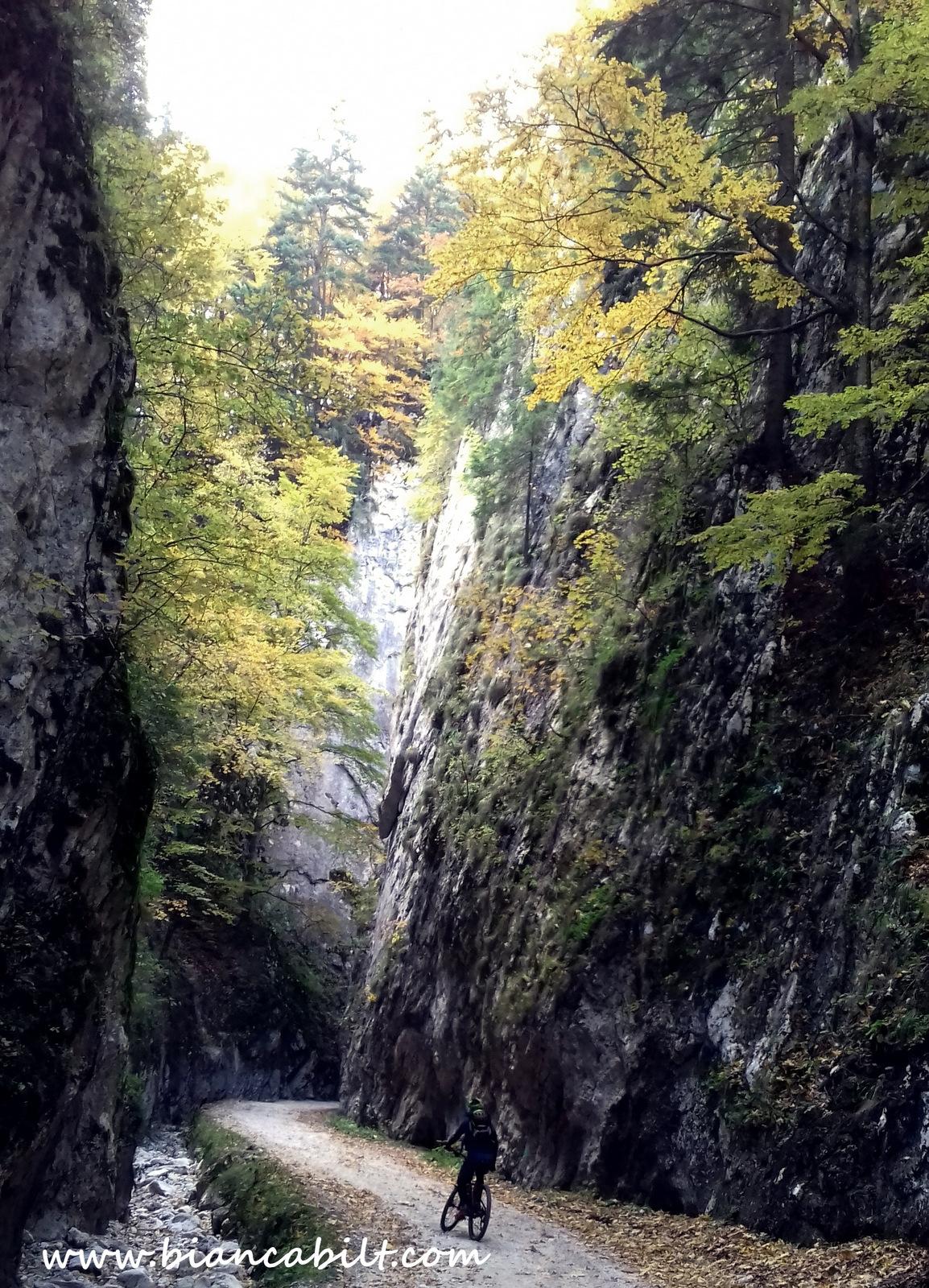 Urcarea prin Cheile Prăpăstiile Zărnești.
