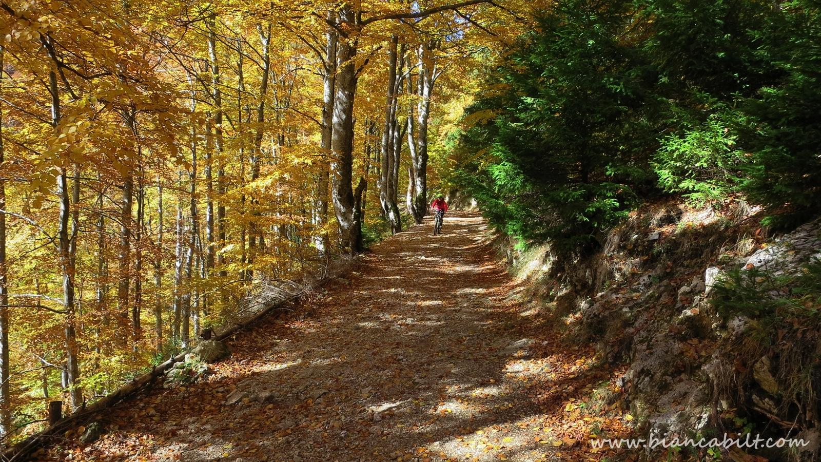 Coborârea spre satul Peștera.