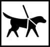 Avustavat koira Urheilumuseolla