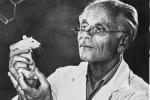 János Selye – otec moderného výskumu stresu