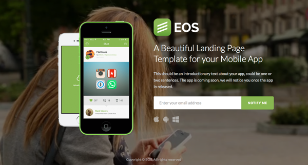 eos-theme-wp