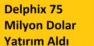 Delphix 75 Milyon Dolar Yarım Aldı