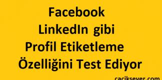 Facebook LinkedIn gibi Profil Etiketleme Özelliğini Test Ediyor