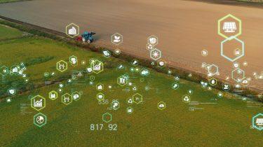Sådan gør kunstig intelligens landbruget mere effektivt og bæredygtigt
