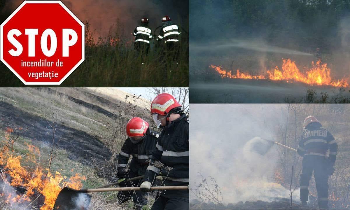 Popierii se lupta cu incendiile de vegetatie