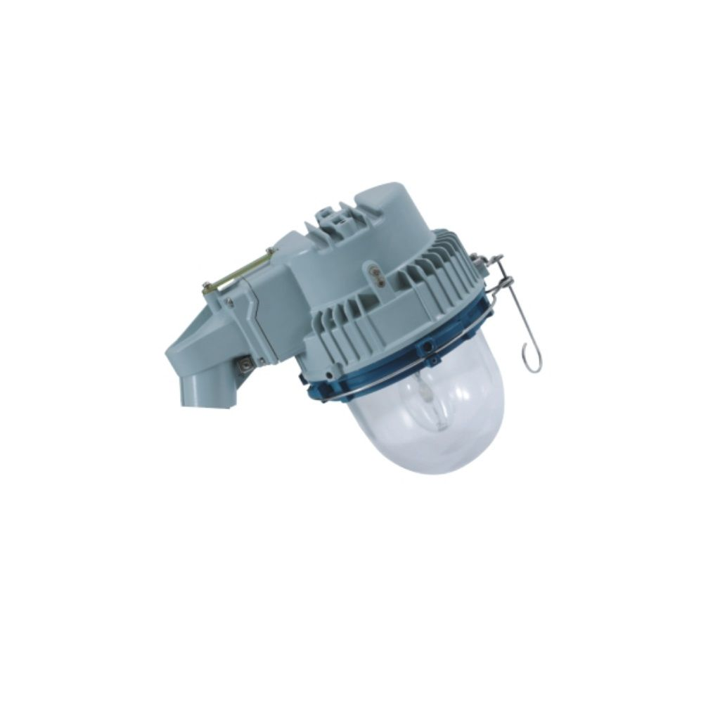 Exproof aydınlatma armatürleri (platform tipi lamba 25 °)