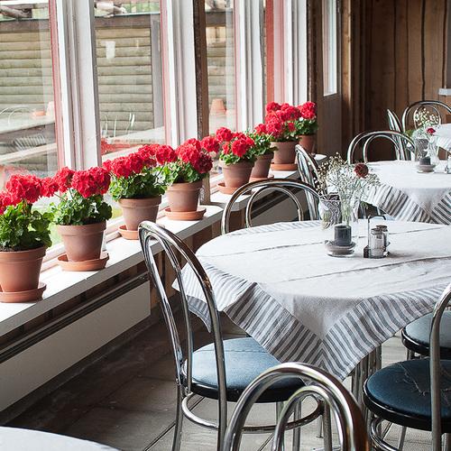 Restaurang Lustgården & Gårdsbutik