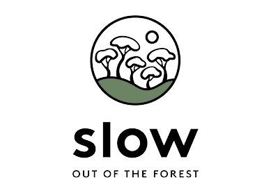 Slow Forest Coffee