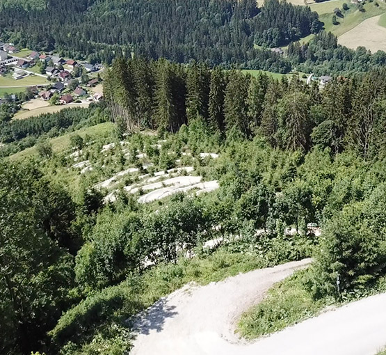Pierergut Trail