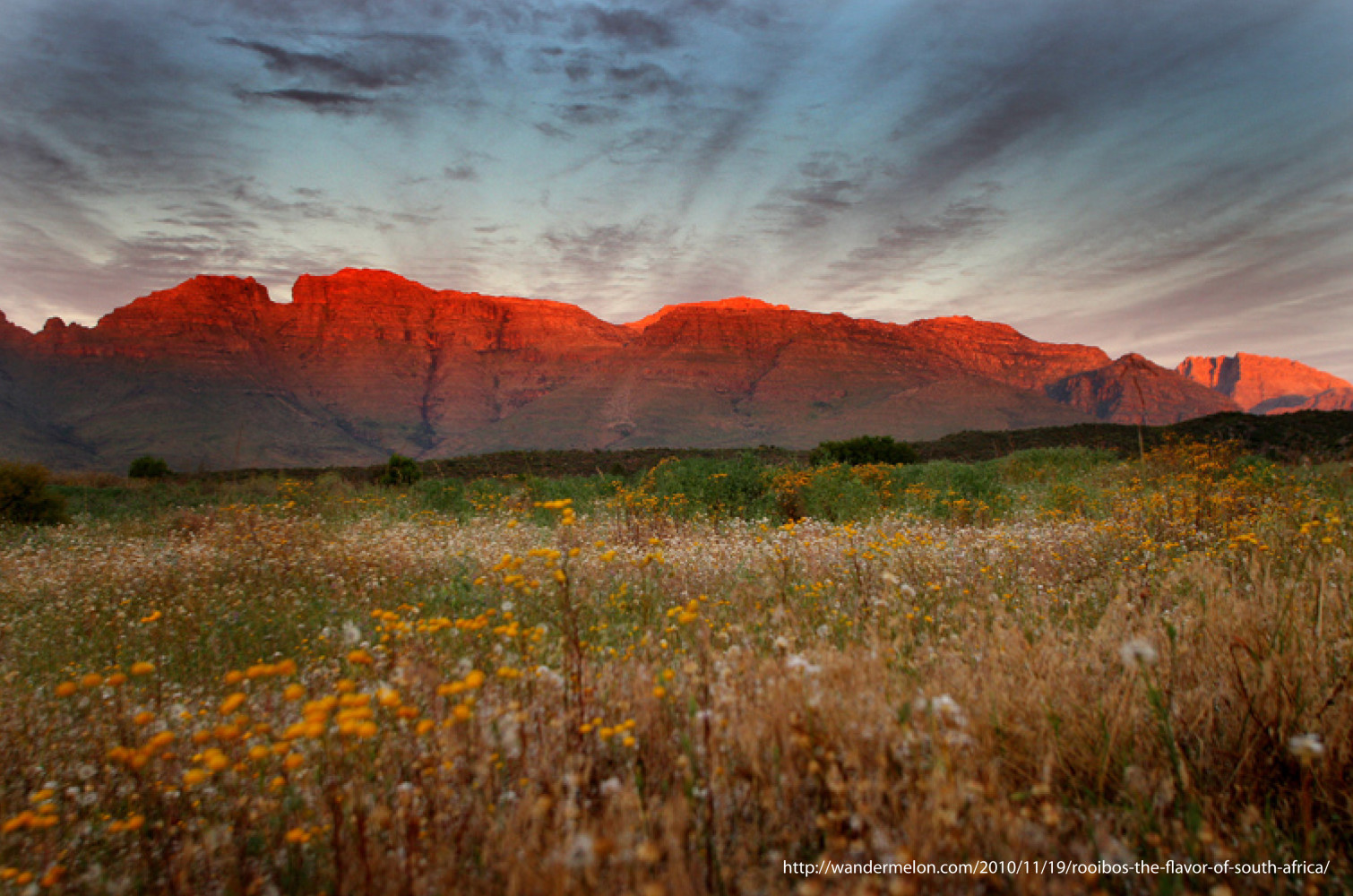 Cederberg, Mountain of Art