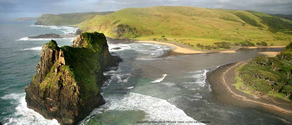 Where the wild things are – Wild Coast