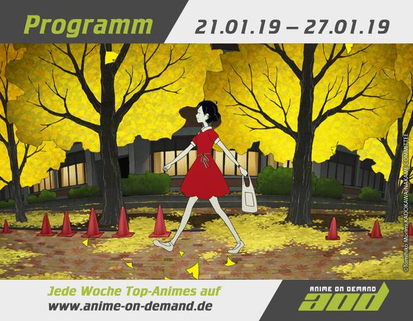 AoD-Programm 19_04