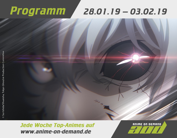 AoD-Programm 19_05