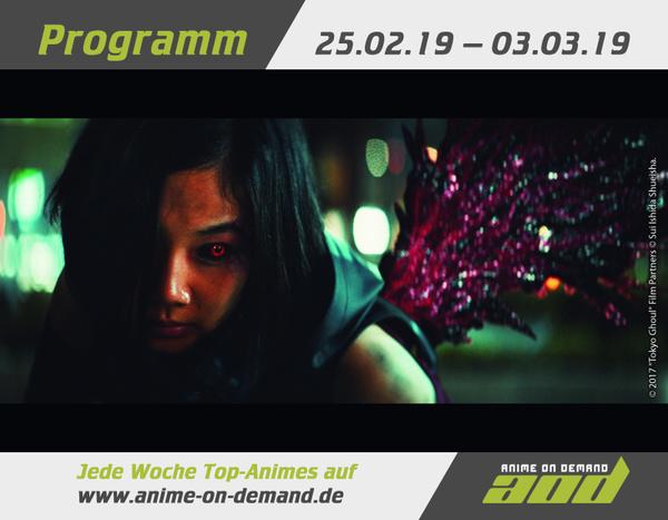 AoD-Programm 19_08