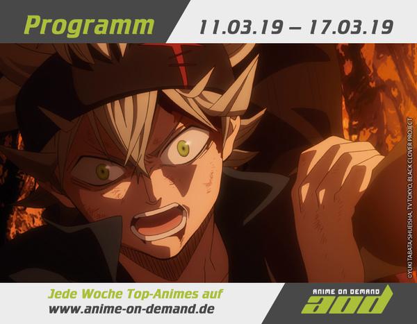 AoD-Programm 19_11