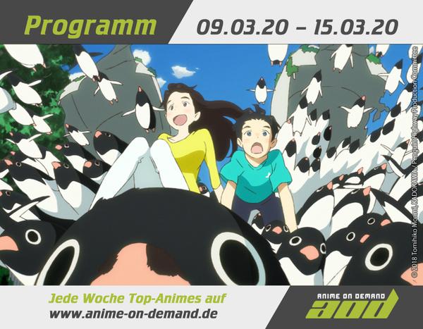 AoD-Programm 20_11