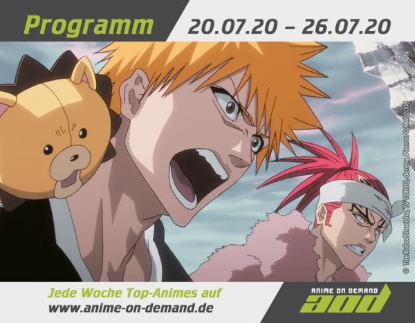 AoD-Programm_20_29