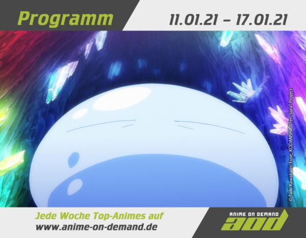 AoD-Programm_21_02