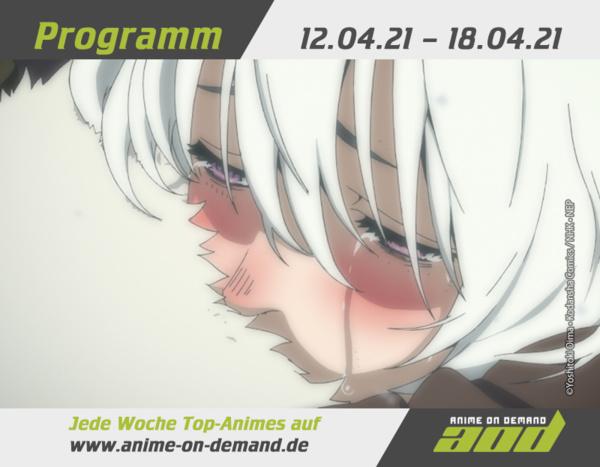 AoD-Programm_21_15