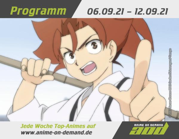 AoD-Programm_21_35