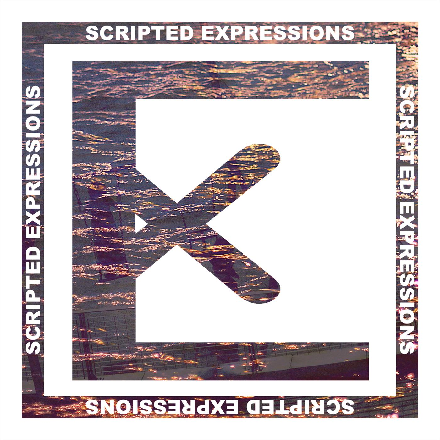 Scripted Expressions